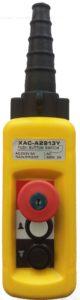 Пульт кабельный XAC-A2913Y